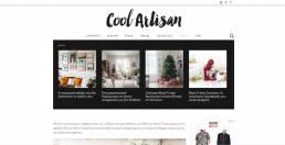 Coolartisan website | web idea
