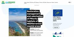 Lifepremed website | web idea